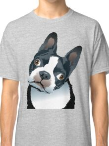 quizzical Bailey Classic T-Shirt