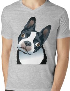 quizzical Bailey Mens V-Neck T-Shirt