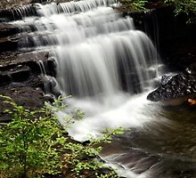 Waterfall Landscape by Christina Rollo