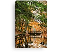 Chenango Valley State Park Canvas Print