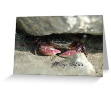 A shy mud crab looks out from under his rock. Greeting Card