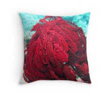 BLOOD RED FEATHER STAR Throw Pillow