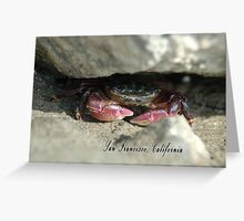 A California mud crab peeks out from his hiding place. Greeting Card