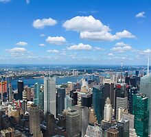 The view from the top of the Empire State Buillding by Dalmatinka