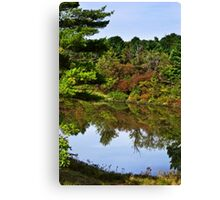 Finch Hollow Lake Landscape Canvas Print