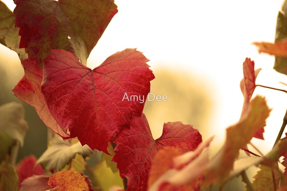 Golden Autumn Heart  by Amy Dee