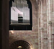 Organ in Speyer Cathedral by karina5