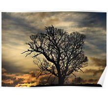 middlesex plains sunset 1# Poster
