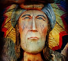 Native American Spirit by Pamela Phelps