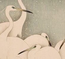Egrets at night Sticker