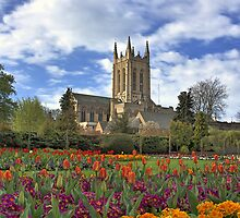 Abbey gardens and cathedral Bury St Edmunds by Dale Batchelor