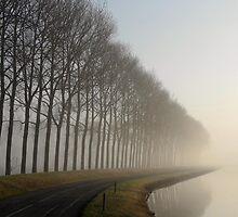Wilhelminadorp, The Netherlands by M. van Oostrum