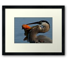 Jaws of Death Framed Print