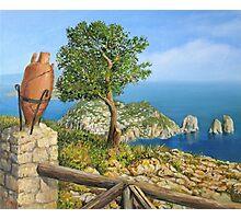 Monte Solaro on island Capri Photographic Print