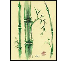 Happiness - Zen bamboo prisma pencil and watercolor drawing Photographic Print