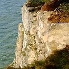 Bright White Cliffs by SerenaB