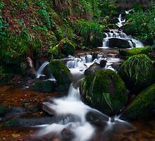 Hebers Ghyll, Ilkley, Yorkshire by Jim Round
