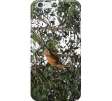 Blond Howler Monkey iPhone Case/Skin