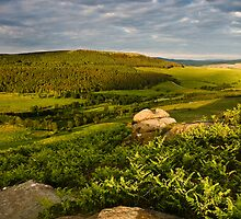 Crookrise From Rough Haw, Yorkshire Dales, United Kingdom by Jim Round