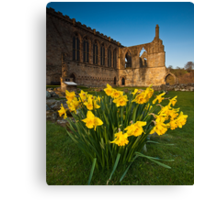 Bolton Abbey, Yorkshire Dales, Yorkshire Dales Canvas Print