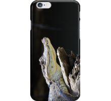 Cano Negro Cayman iPhone Case/Skin