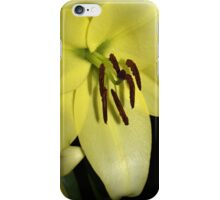 Lily (iphone case) iPhone Case/Skin