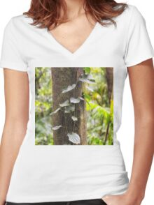 Beautiful rainforest vine on a tree Women's Fitted V-Neck T-Shirt