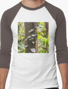 Beautiful rainforest vine on a tree Men's Baseball ¾ T-Shirt