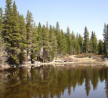 End Of April In The Sierras by marilyn diaz