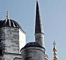 Domes and Minaret by Raftman