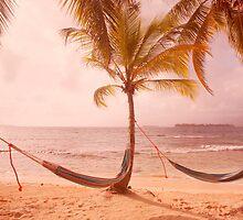 Panama Perfection by Alex  Bramwell