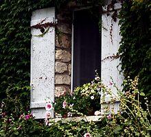 Windows Around The World 8 by Roddy Fitzgerald