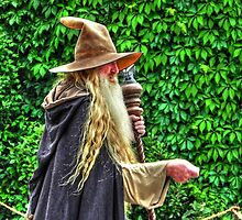 The Wizard from Afar by bannercgtl10