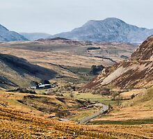 The Bala Road by Irene  Burdell