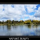 Natures beauty by vince dwyer