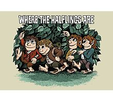 Where the Halflings Are Photographic Print