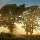 Twilight Guardians. Misty Roads of Scotland by JennyRainbow
