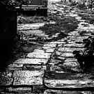 Winding cobble stoned driveway in Vodnjan, Istria, Croatia by Luke Kliman