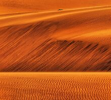 Desert Sands by Jill Fisher