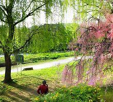 Cherry Blossom in Kyoto by Craig A. White (Australia)