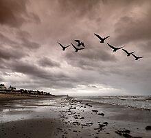 Normandy Beach by John Lines