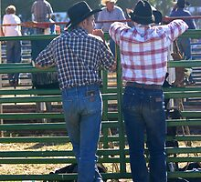 Cowboy Butts by Melodee Scofield