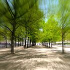 Boulevards And Greens by Nathan Probert