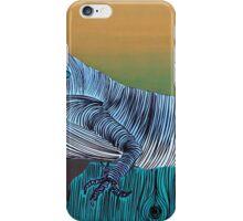 Lib 1069 iPhone Case/Skin