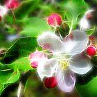 essence of spring 2 by LoreLeft27