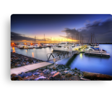 The Envy of Many Canvas Print