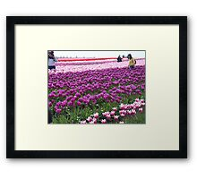 different shades Framed Print