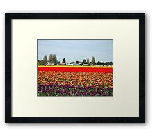 canvas colors Framed Print
