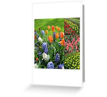 Blaze of Colour - Keukenhof Tulip Collage Greeting Card