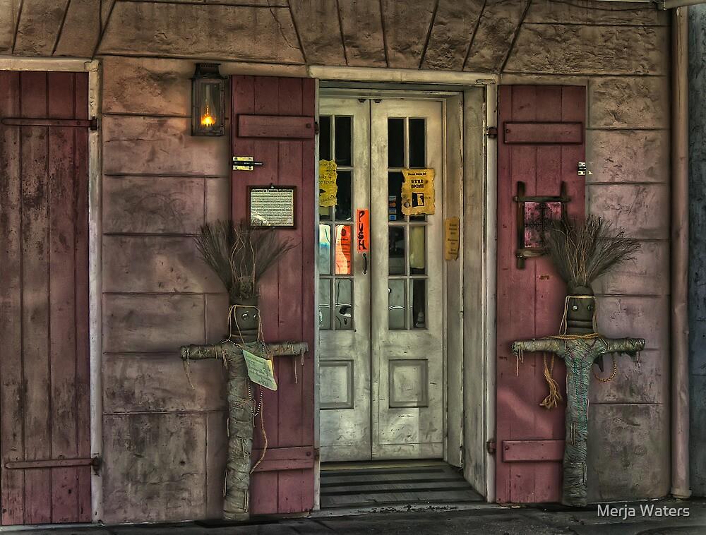 Voodoo Shop by Merja Waters